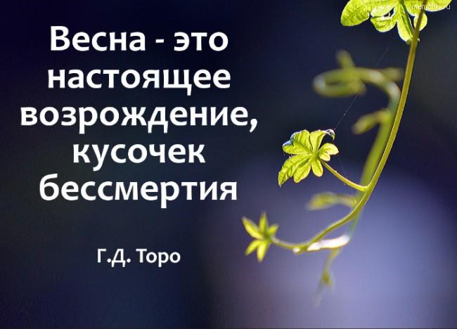 Весна - это настоящее возрождение, кусочек бессмертия #цитата