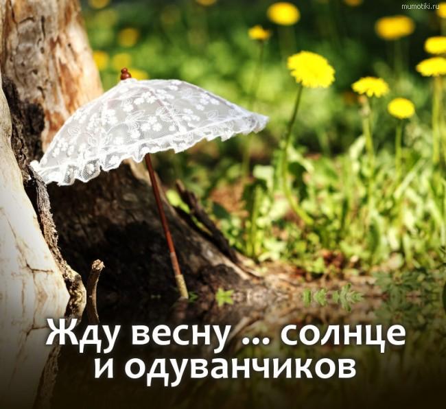 Жду весну ... солнце и одуванчиков #цитата