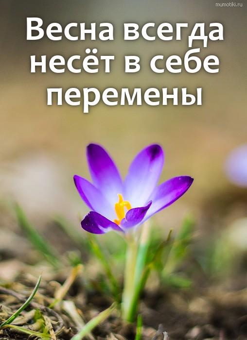 Весна всегда несёт в себе перемены #цитата