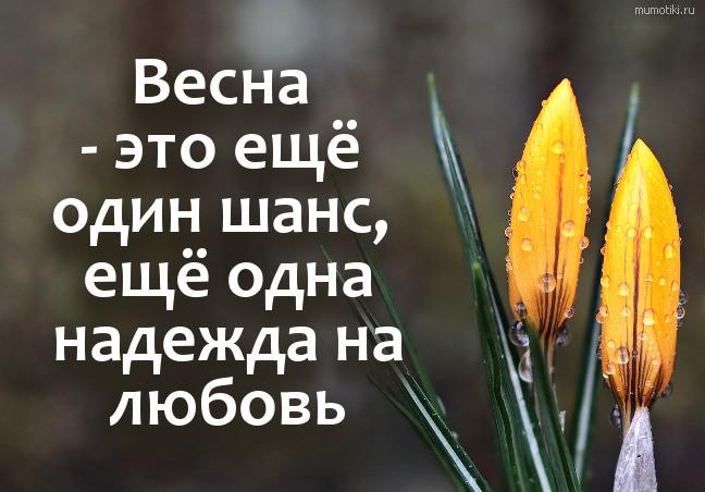 Весна - это ещё один шанс, ещё одна надежда на любовь #цитата