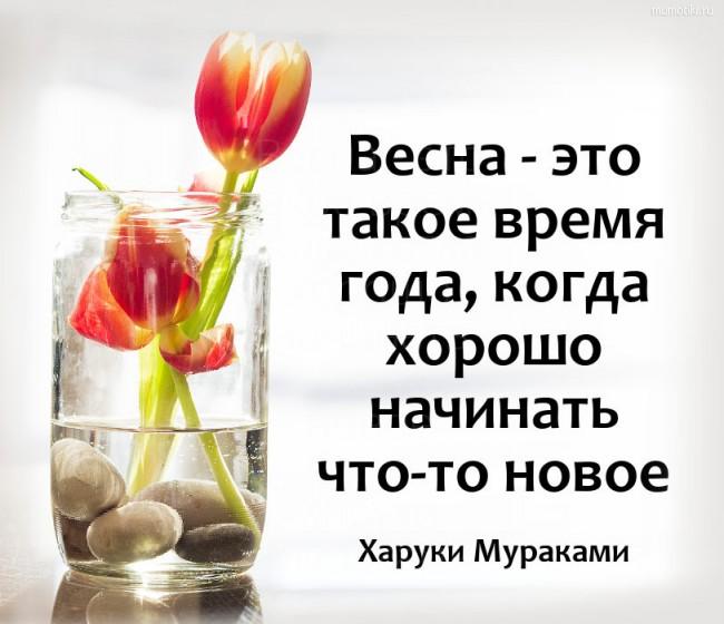 Весна - это такое время года, когда хорошо начинать что-то новое. Харуки Мураками #цитата