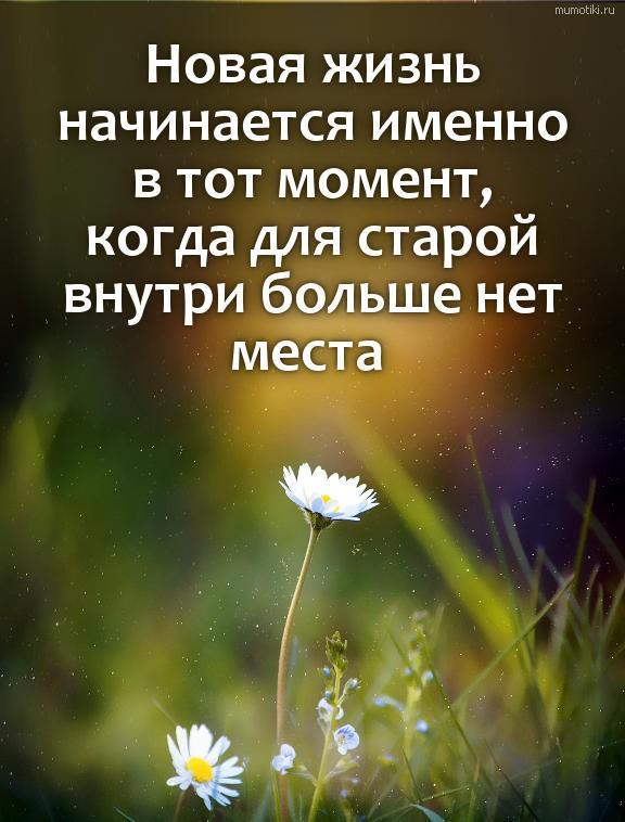 Новая жизнь начинается именно в тот момент, когда для старой внутри больше нет места #цитата
