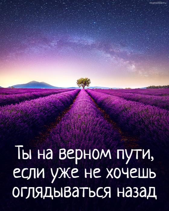 Ты на верном пути, если уже не хочешь оглядываться назад #цитата