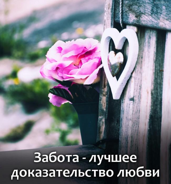 Забота - лучшее доказательство любви #цитата
