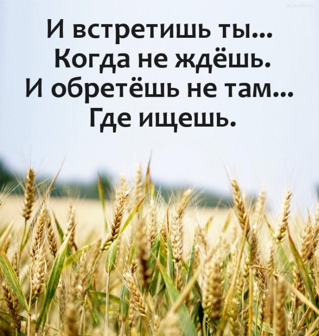 И встретишь ты... Когда не ждёшь. И обретёшь не там... Где ищешь. #цитата