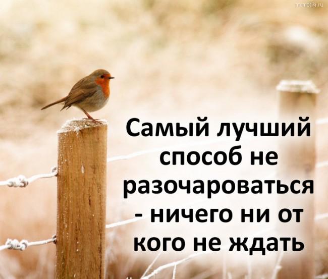 Самый лучший способ не разочароваться - ничего ни от кого не ждать #цитата