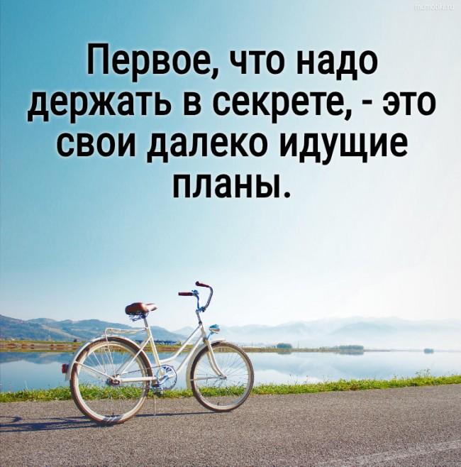 Первое, что надо держать в секрете, - это свои далеко идущие планы. #цитата