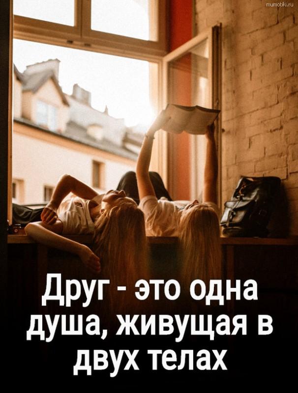 Друг - это одна душа, живущая в двух телах #цитата