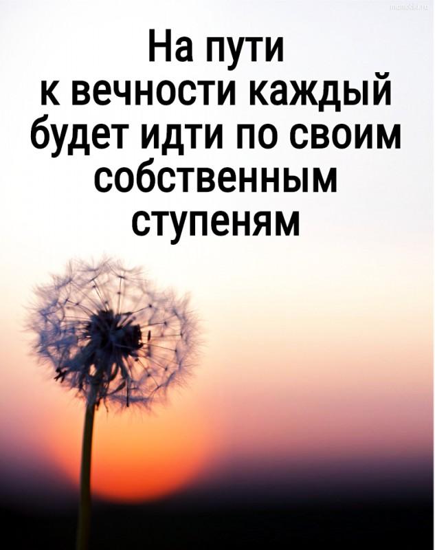 На пути к вечности каждый будет идти по своим собственным ступеням #цитата