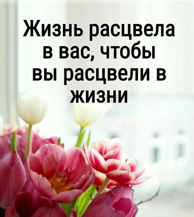 Жизнь расцвела в вас, чтобы вы расцвели в жизни #цитата