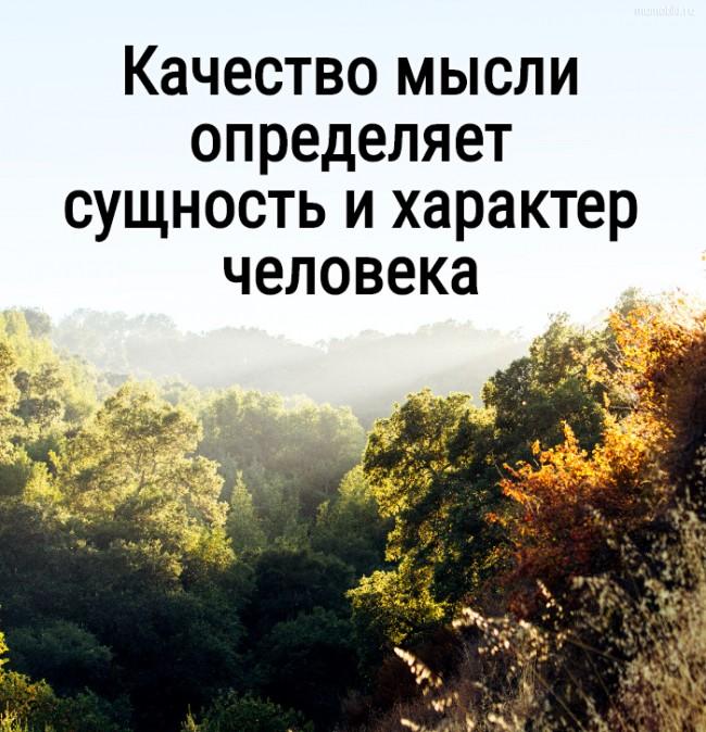 Качество мысли определяет сущность и характер человека #цитата