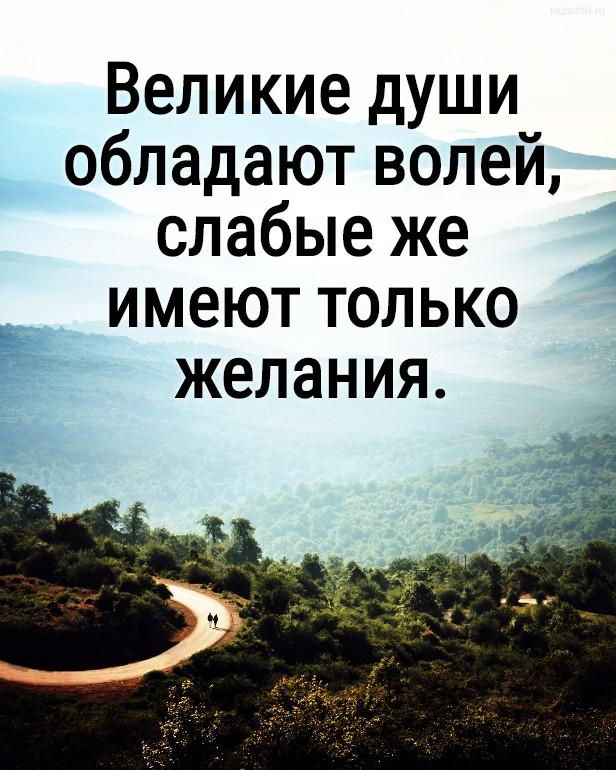 Великие души обладают волей, слабые же имеют только желания. #цитата
