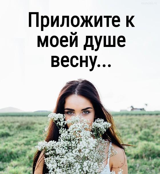 Приложите к моей душе весну... #цитата