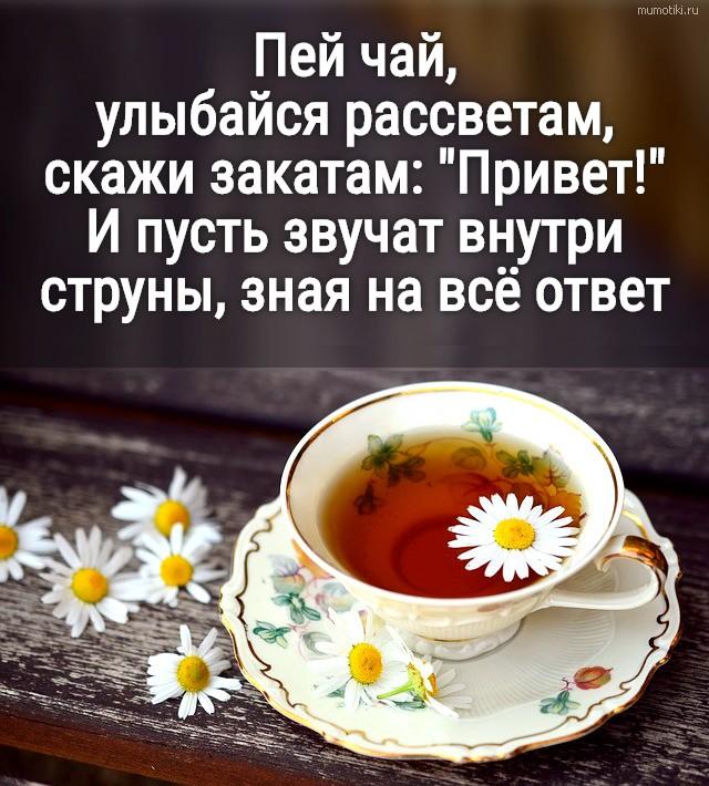 Пей чай, улыбайся рассветам,скажи закатам: