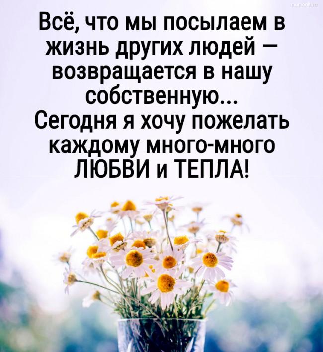 Всё, что мы посылаем в жизнь других людей — возвращается в нашу собственную....Сегодня я хочу пожелать каждому много-много ЛЮБВИ и ТЕПЛА! ;) #цитата