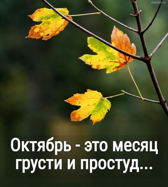 Октябрь - это месяц грусти и простуд.