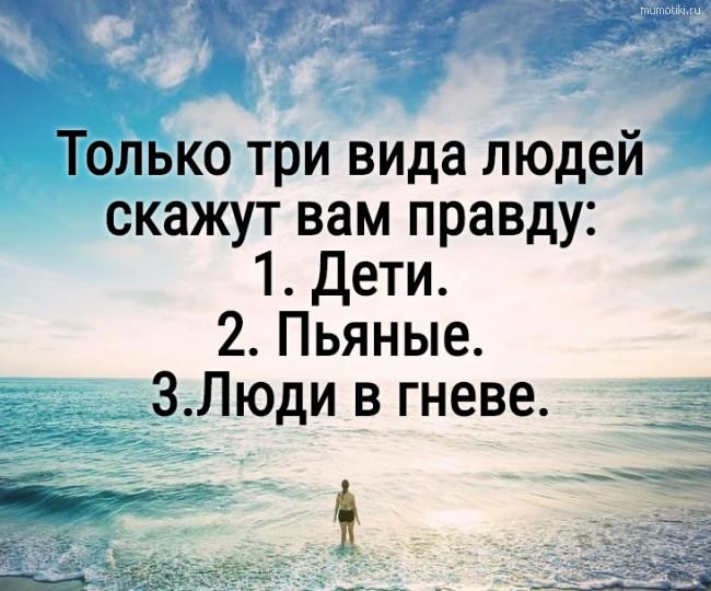 Только три вида людей скажут вам правду: 1. Дети. 2. Пьяные. 3.Люди в гневе. #цитата