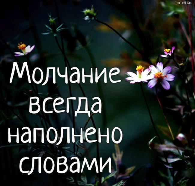 Молчание всегда наполнено словами #цитата