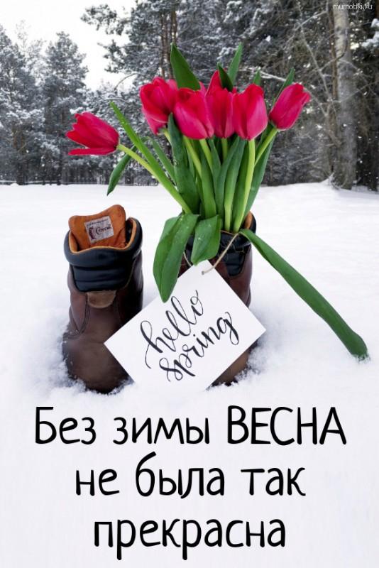 Без зимы ВЕСНА не была так прекрасна. #цитата