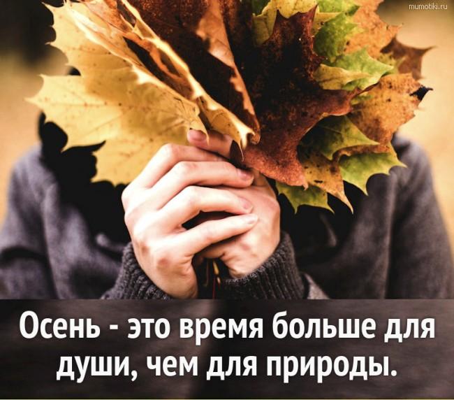 Осень - это время больше для души, чем для природы.