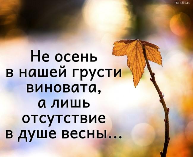 Не осень в нашей грусти виновата, а лишь отсутствие в душе весны... #цитата
