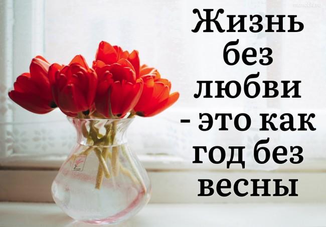 Жизнь без любви - это как год без весны. #цитата