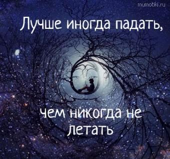 Лучше иногда падать,  чем никогда не летать #цитаты
