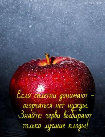 Если сплетни донимают - огорчаться нет нужды. Знайте: черви выбирают только лучшие плоды! #цитаты