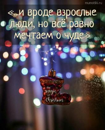 «...и вроде взрослые люди, но всё равно мечтаем о чуде» #цитаты