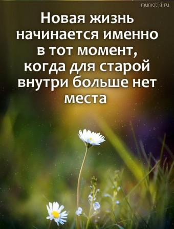 Новая жизнь начинается именно в тот момент, когда для старой внутри больше нет места #цитаты
