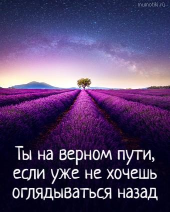 Ты на верном пути, если уже не хочешь оглядываться назад #цитаты