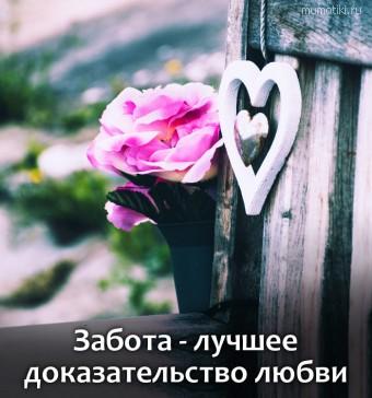 Забота - лучшее доказательство любви #цитаты