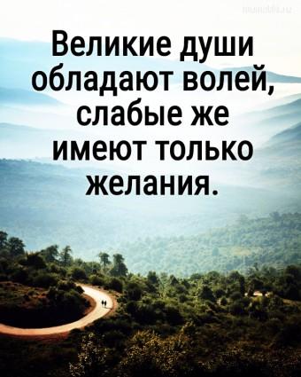 Великие души обладают волей, слабые же имеют только желания. #цитаты