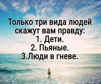 Только три вида людей скажут вам правду: 1. Дети. 2. Пьяные. 3.Люди в гневе. #цитаты