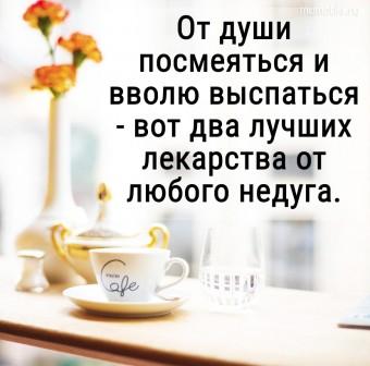 От души посмеяться и вволю выспаться - вот два лучших лекарства от любого недуга. #цитаты