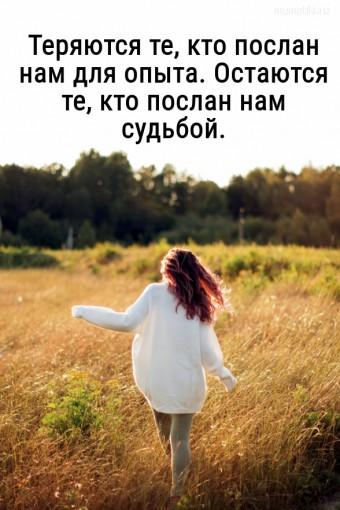 Теряются те, кто послан нам для опыта. Остаются те, кто послан нам судьбой. #цитаты
