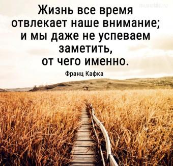 Жизнь все время отвлекает наше внимание; и мы даже не успеваем заметить, от чего именно. #цитаты