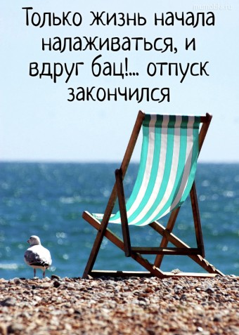 Только жизнь начала налаживаться, и вдруг бац!... отпуск закончился #цитаты