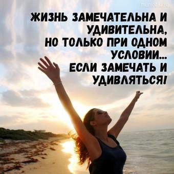 Жизнь замечательна и удивительна, но только при одном условии... если замечать и удивляться! #цитаты