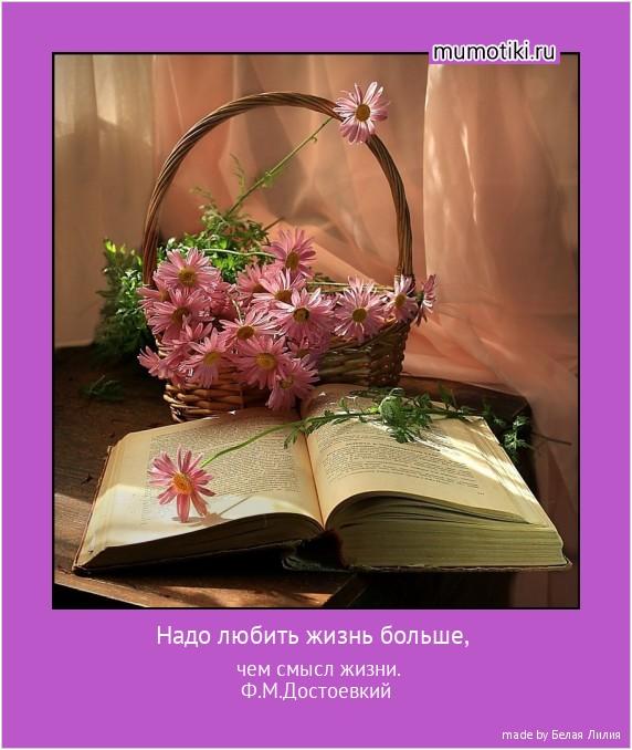 Надо любить жизнь больше, чем смысл жизни. Ф.М.Достоевкий #мотиватор