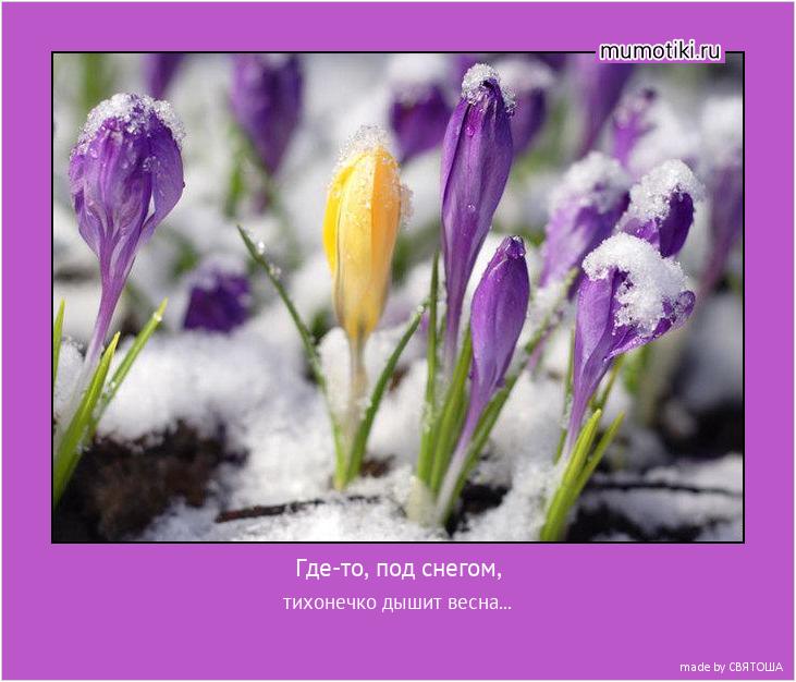 Где-то, под снегом, тихонечко дышит весна... #мотиватор