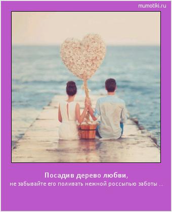 Посадив дерево любви, не забывайте его поливать нежной россыпью заботы ... #мотиватор