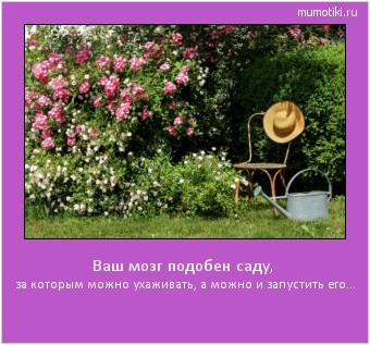 Ваш мозг подобен саду, за которым можно ухаживать, а можно и запустить его... #мотиватор