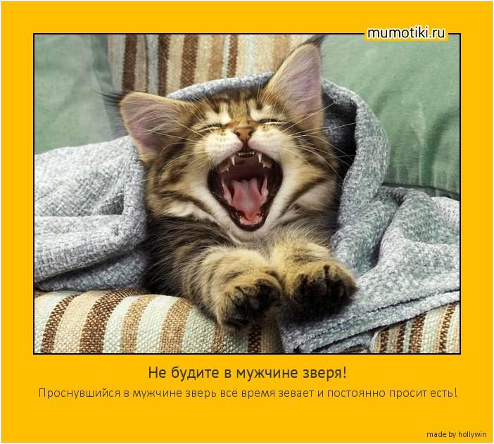 Не будите в мужчине зверя! Проснувшийся в мужчине зверь всё время зевает и постоянно просит есть! #мотиватор
