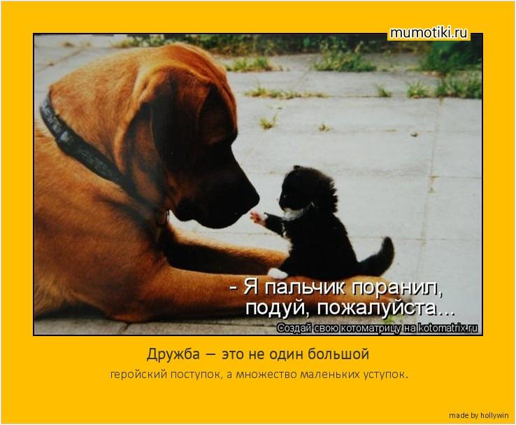 Дружба — это не один большой геройский поступок, а множество маленьких уступок. #мотиватор