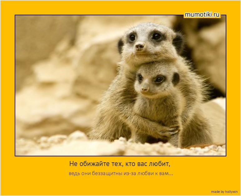 Не обижайте тех, кто вас любит, ведь они беззащитны из-за любви к вам... #мотиватор