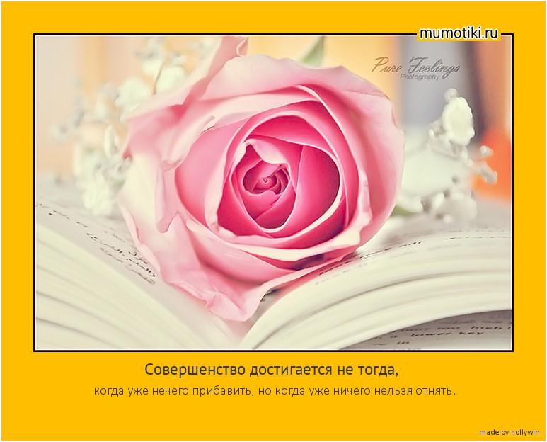 Совершенство достигается не тогда, когда уже нечего прибавить, но когда уже ничего нельзя отнять. #мотиватор