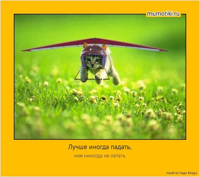 Лучше иногда падать, чем никогда не летать #мотиватор