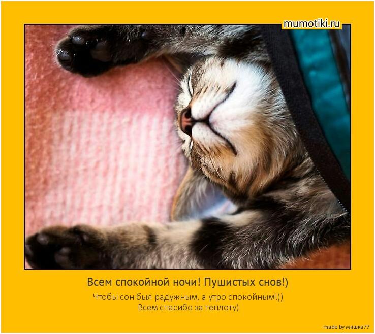 Всем спокойной ночи! Пушистых снов!) Чтобы сон был радужным, а утро спокойным!)) Всем спасибо за теплоту) #мотиватор