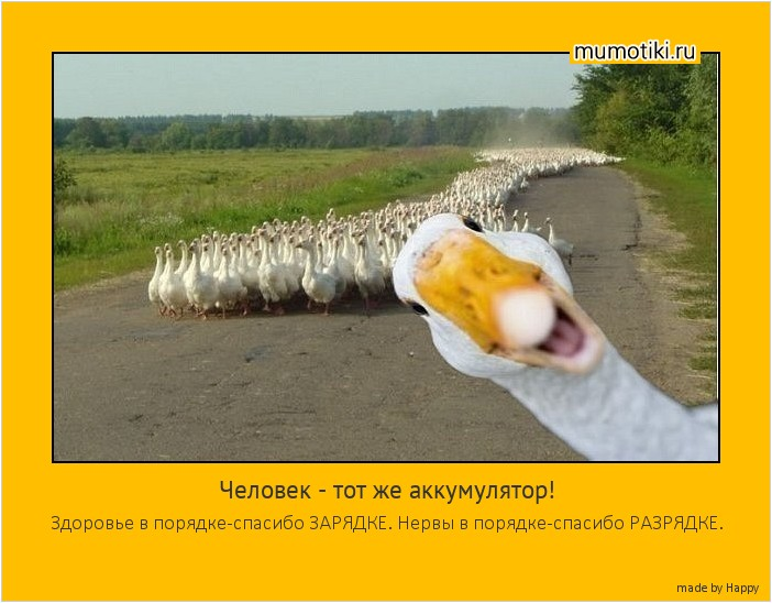 samaya-zhopa-rossii